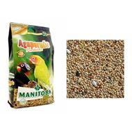 Manitoba Agapornis Parakeets