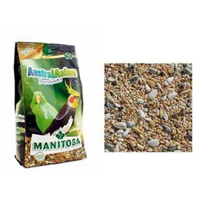 Manitoba Australasian Parakeets