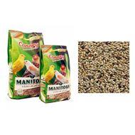 Manitoba Canary Best Premium