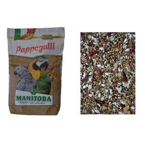 Manitoba Pappagalli Light