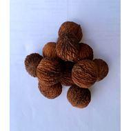 Černé ořechy 1 kg
