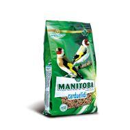 Manitoba Carduelidi