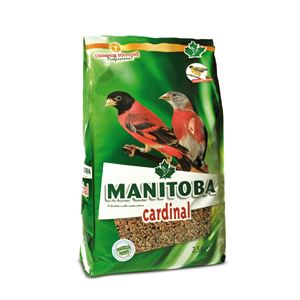 Manitoba Cardinal